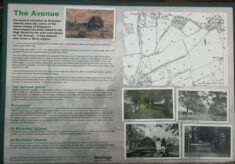 The Avenue Information Board