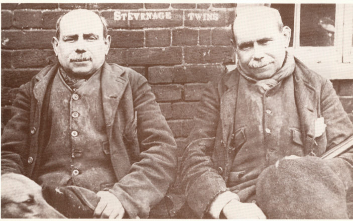 The Fox Twins | Stevenage Museum