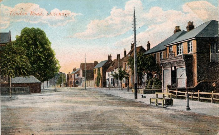 Ayres grocer c 1905 at 148 High Street at the bottom the the High Street, looking south down London Road | From the Stevenage Museum collections (PP503)
