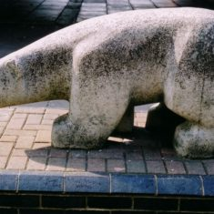 Polar Bear, by Mark Harvey | Pauline Maryan