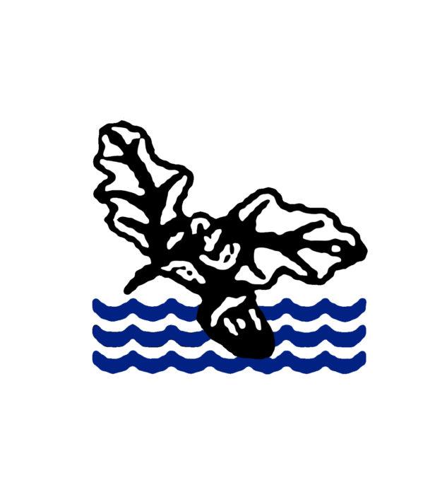 Collenswood School Stevenage Logo   Markus Milligan