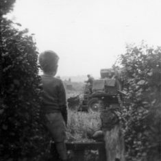 Harvest Time behind 97 Fairview Road on the site of the Fairview Road Allotments c.1961.